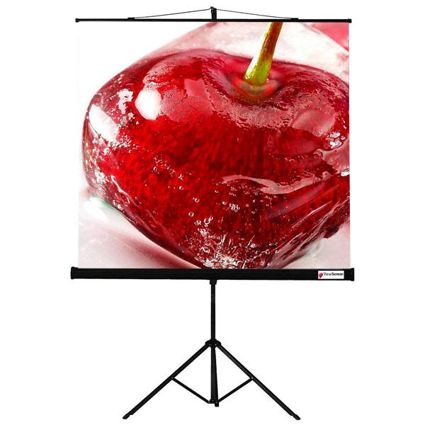 Экран для видеопроектора ViewScreen М.Видео 3990.000